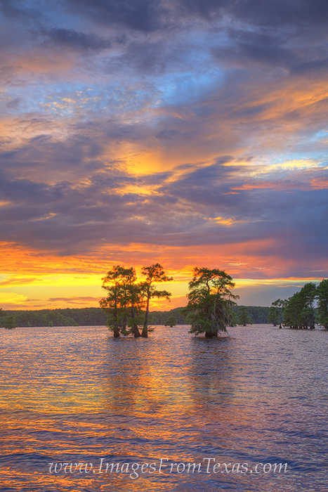 caddo lake images,caddo lake state park,caddo lake prints,texas sunset images,texas prints,east texas, photo
