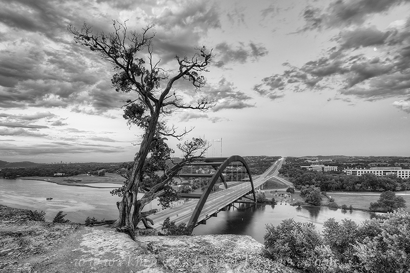 austin in black and white,texas black and white,360 black and white, photo