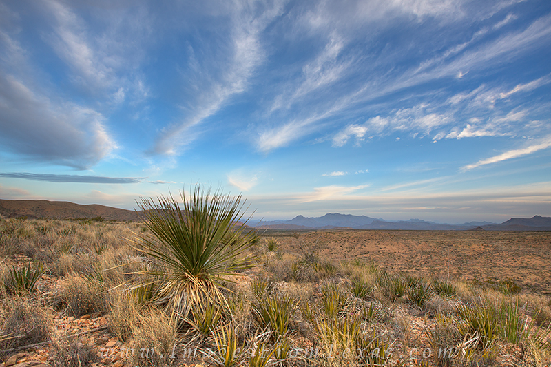 big bend national park,texas landscapes,texas national parks,texas images,big bend, photo