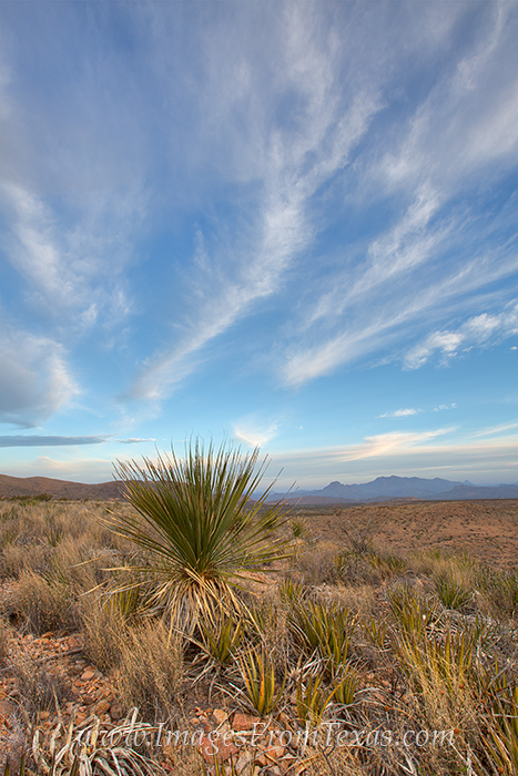 Big Bend Images,Big Bend National Park,Texas landscapes,Texas national parks, photo