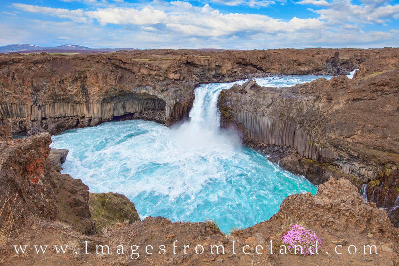 At the Aldeyjarfoss waterfall in the northern Iceland highlands, the Skjálfandafljót River drops ~ 65 feet. Flanked by basalt...