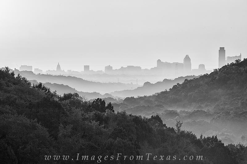 austin skyline,austin black and white,black and white images,austin texas,frost tower,state capitol,texas in black and white, photo