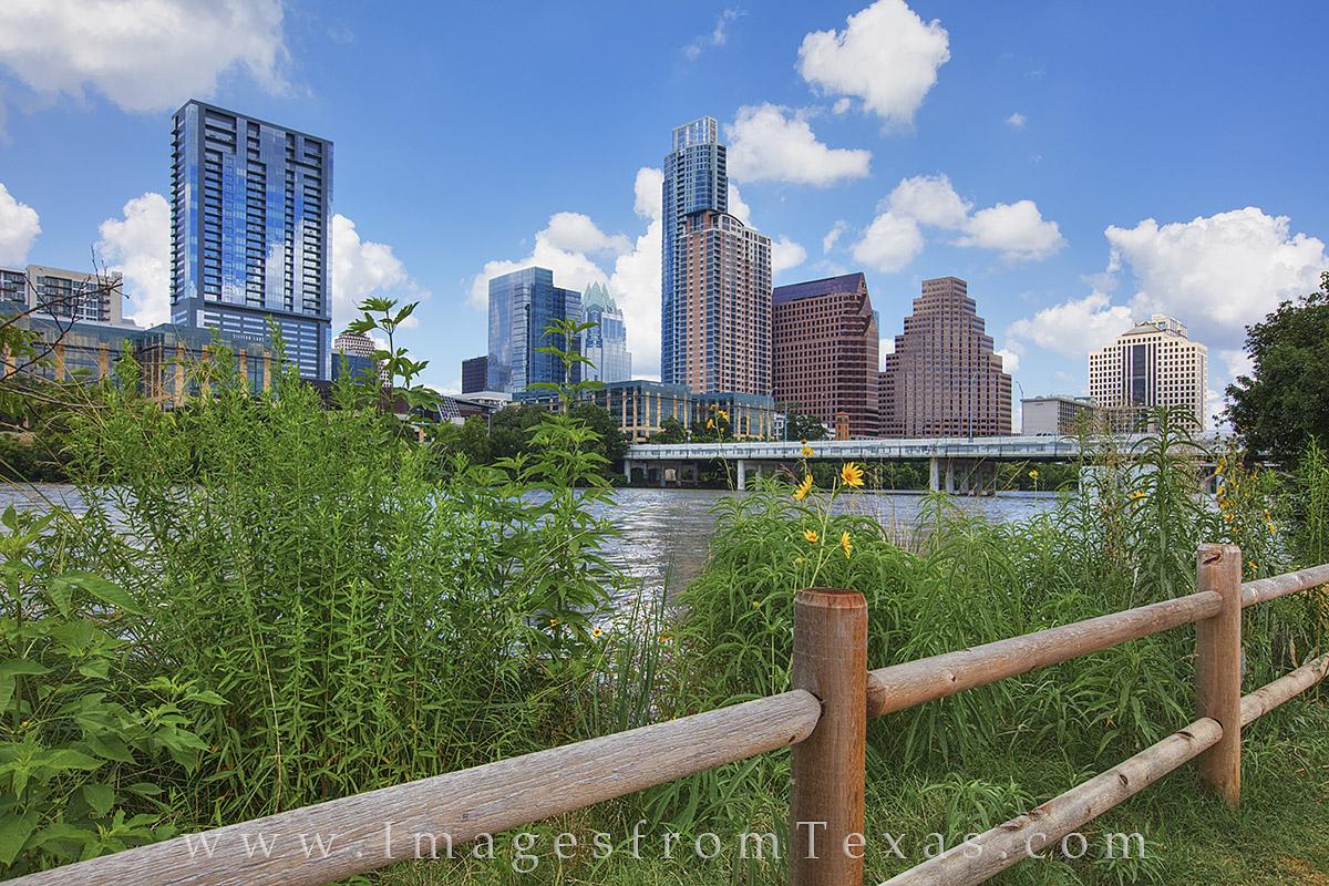 austin texas, downtown austin, austin skyline, zilker park, lady bird lake, zilker park hike and bike, austin texas photos, austin texas prints, photo