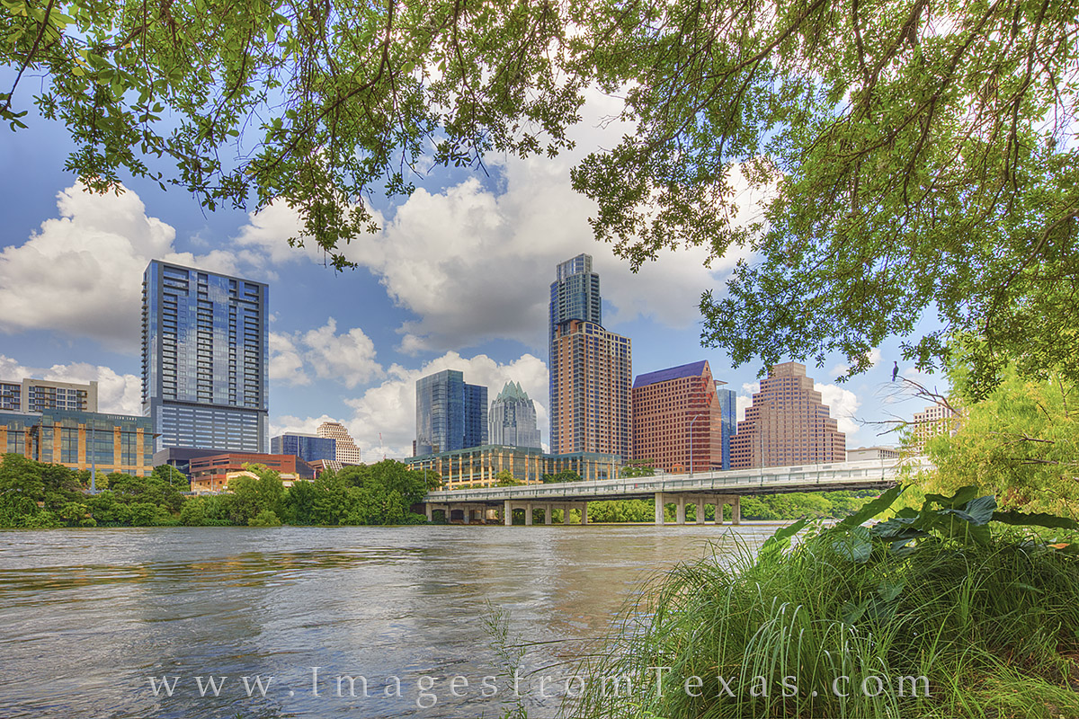 austin texas photos, downtown austin, austin skyline, lady bird lake, zilker park, austin texas summer, summertime in austin, photo