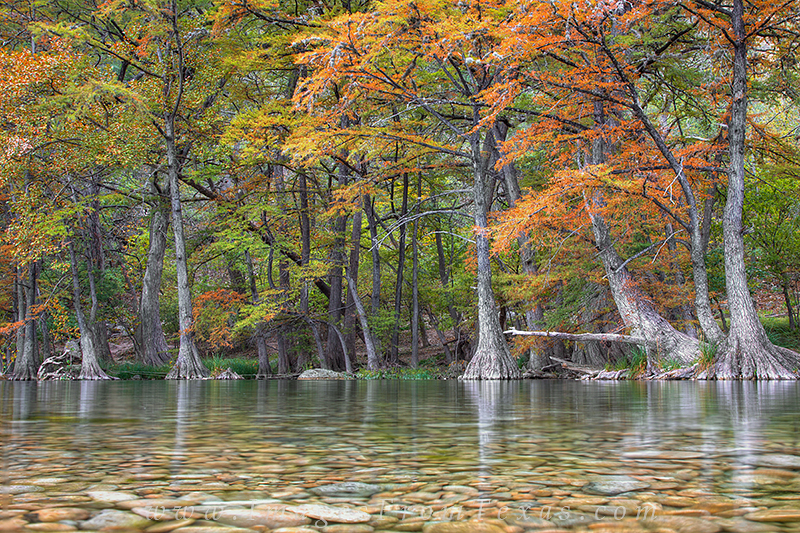 autumn Colors,Texas Hill Country,Garner State Park,Texas Hill Country photos, photo