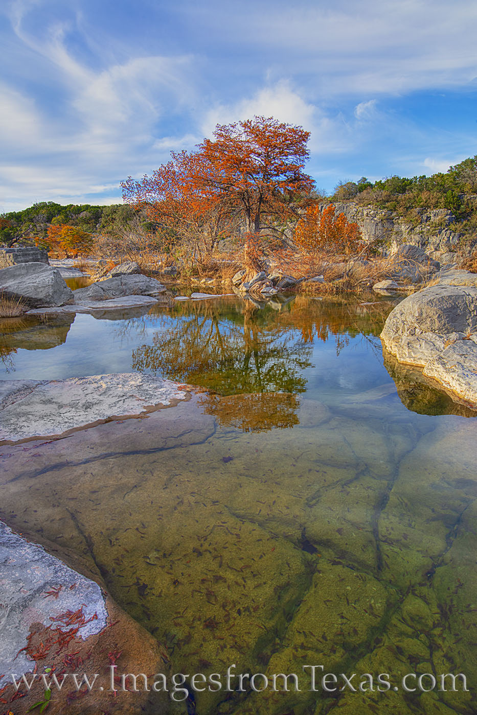pedernales falls, pedernales river, pedernales falls state park, texas hill country, autumn, autumn color, November, cypress, pool, water, reflection, sunset, evening, solitude, photo