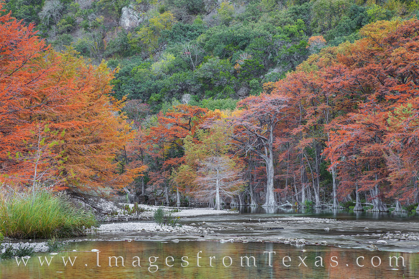 frio river, autumn, fall, colors, november, hill country, garner state park, cypress, photo