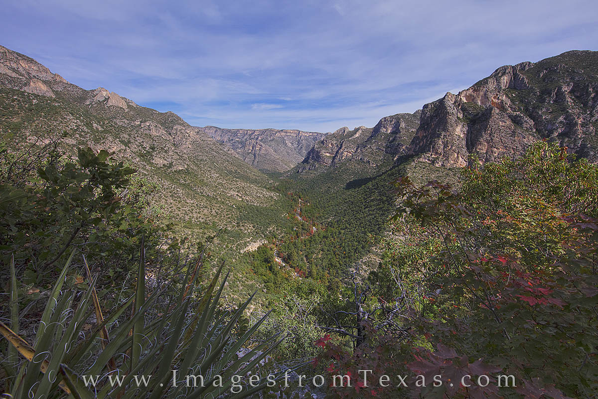 McKittrick Canyon, Guadalupe Mountains, Texas fall colors, autumn colors, texas landscapes, guadalupe mountains national park, bigtooth maples, photo