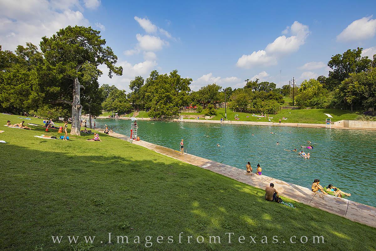 barton springs, barton pool, barton springs pool, barton springs pool photos, austin texas, austin texas photos, austin icons, austin life, photo