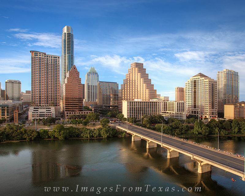 austin texas bats,austin texas images,austin skyline prints,downtown austin, photo