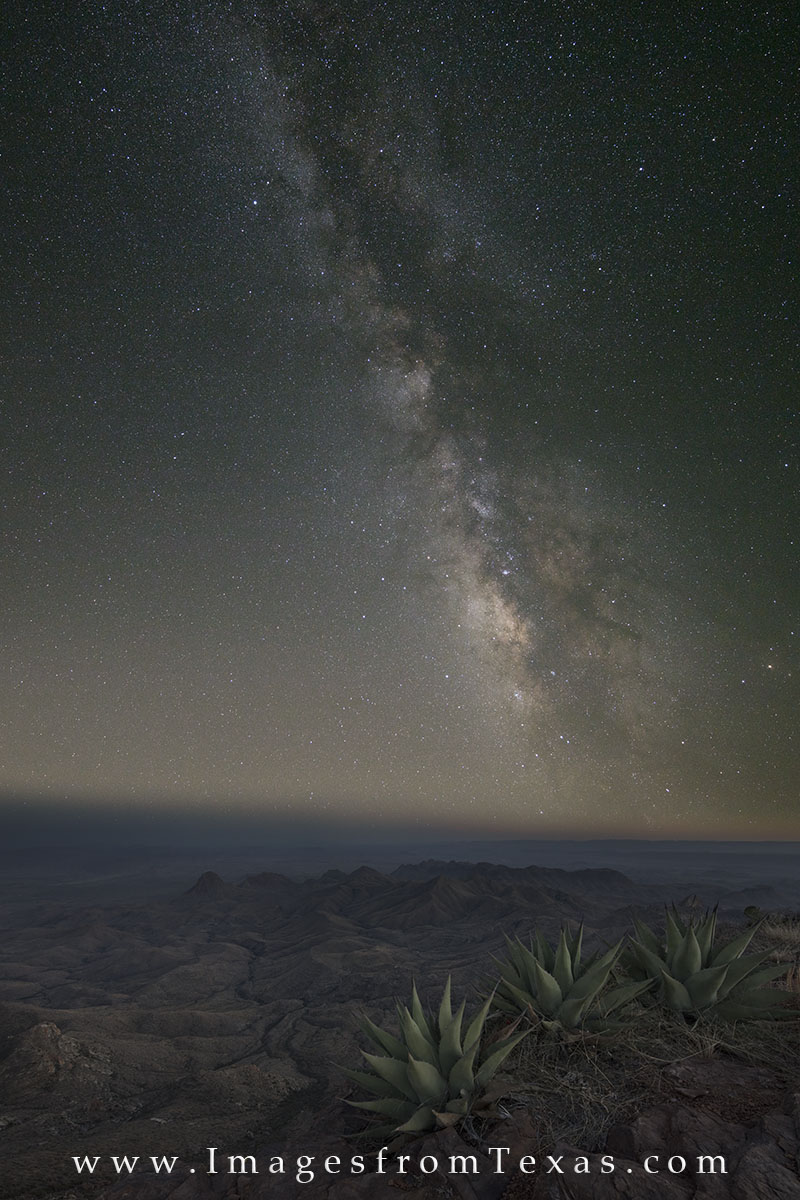 big bend national park, big bend images, south rim, south rim trail, yucca, spring, texas landscapes, milkky way, milky way images, texas milky way, texas landscapes, texas hikes, photo