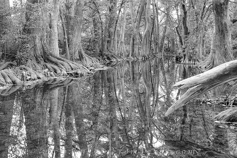 texas hill country,cibolo creek,hill country images,beorne,black and white photos, photo