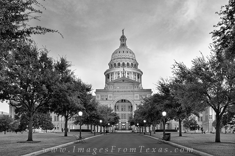 Austin texas black and white