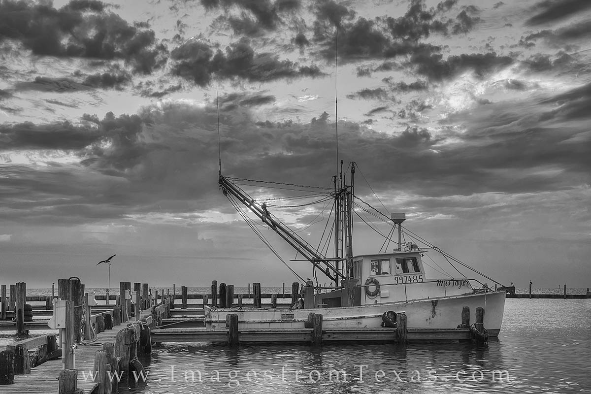 rockport texas, port aransas, rockport harbor, rockport photos, mustang island, texas coast, texas gulf coast, shrimp boat, black and white, texas boats, photo