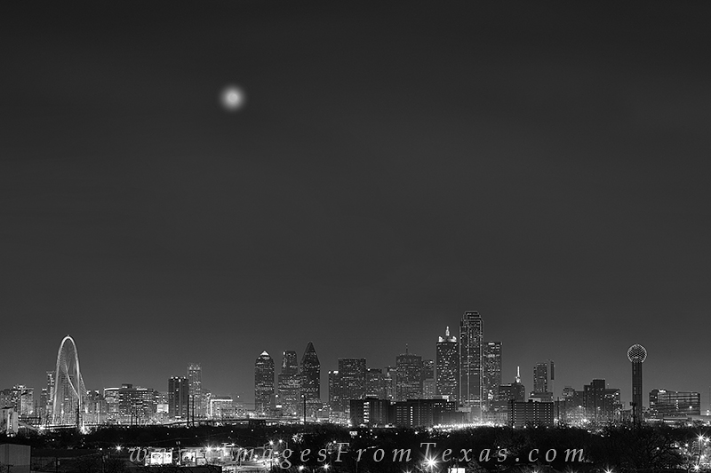 Dallas skyline photo,Dallas black and white,Dallas,Dallas skyline image,Margaret Hill Bridge,Trammell Crow Tower,Reunion Tower, photo