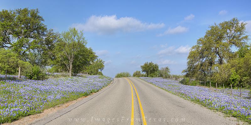 bluebonnet photos,bluebonnet panorama,texas hill country panorama,texas landscapes,texas highways, photo