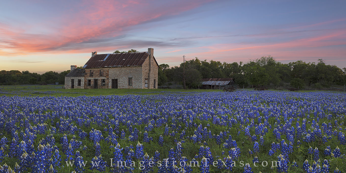texas bluebonnets, panorama, bluebonnet panorama, bluebonnets, bluebonnet photos, marble falls, texas hill country, stone building, 281, texas wildflowers, photo