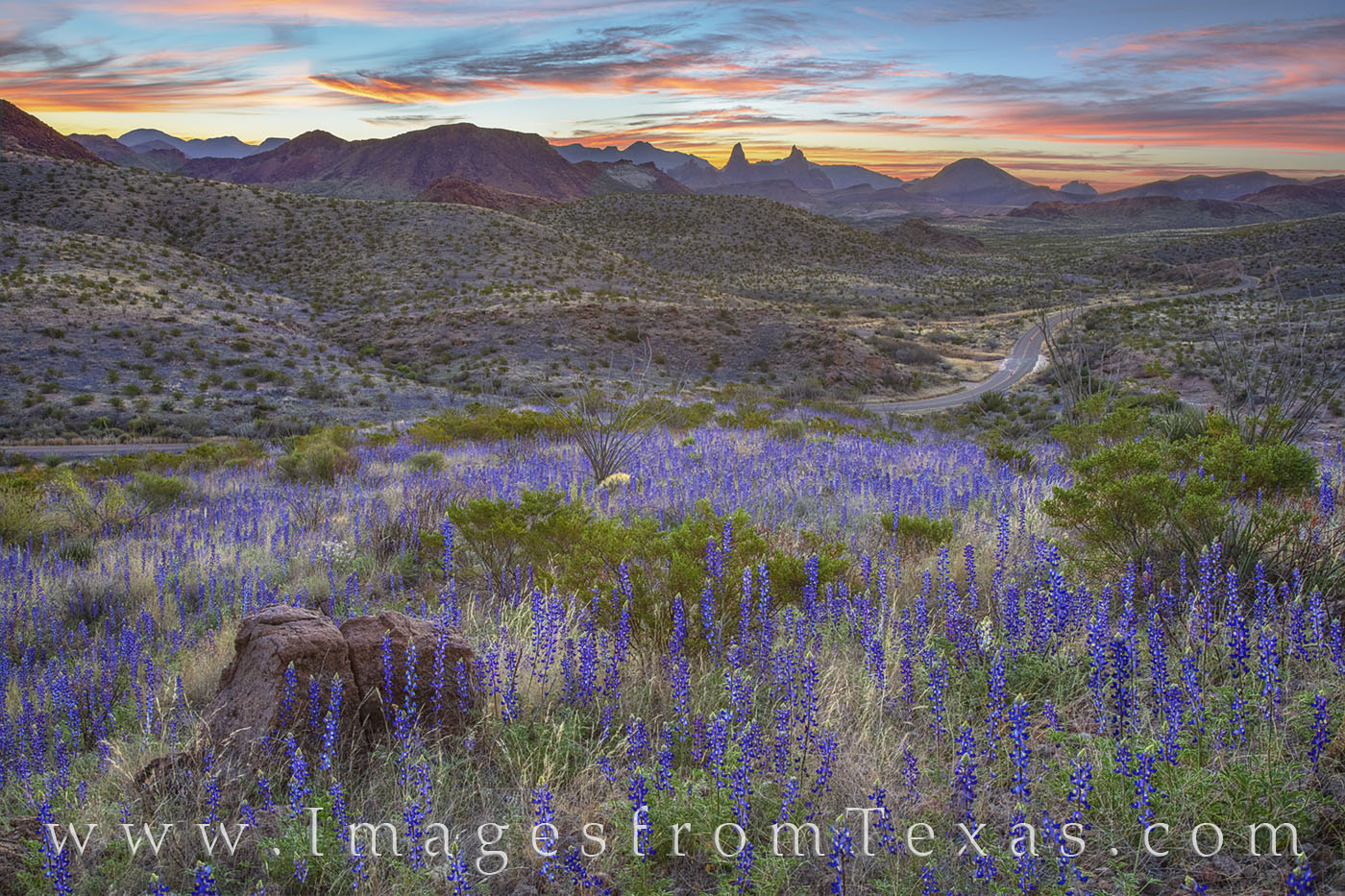 Bluebonnets spilled down the slopes, and from where I stood, the distant and iconic Mule Ears rock formation made for a great...