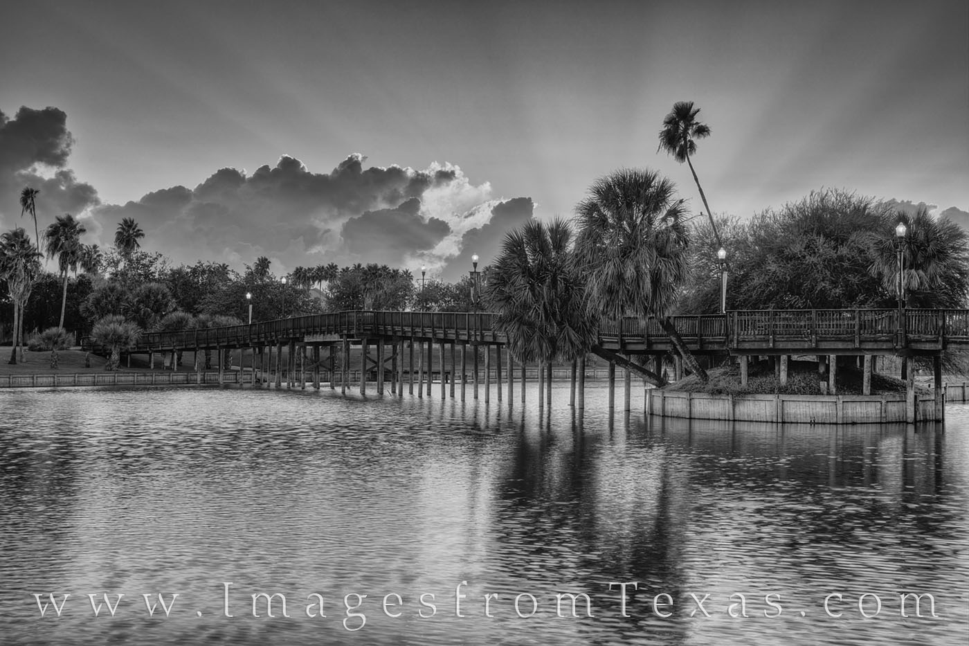 brownsville, south texas, resaca, wooden bridge, sunrise, dawn, texas coast, morning, texas southmost college, black and white, photo