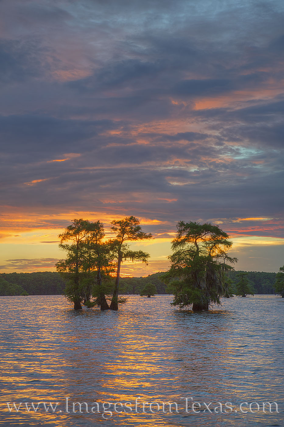 caddo lake, cypress trees, east texas, water, lake, sunset, summer, skies, color, photo