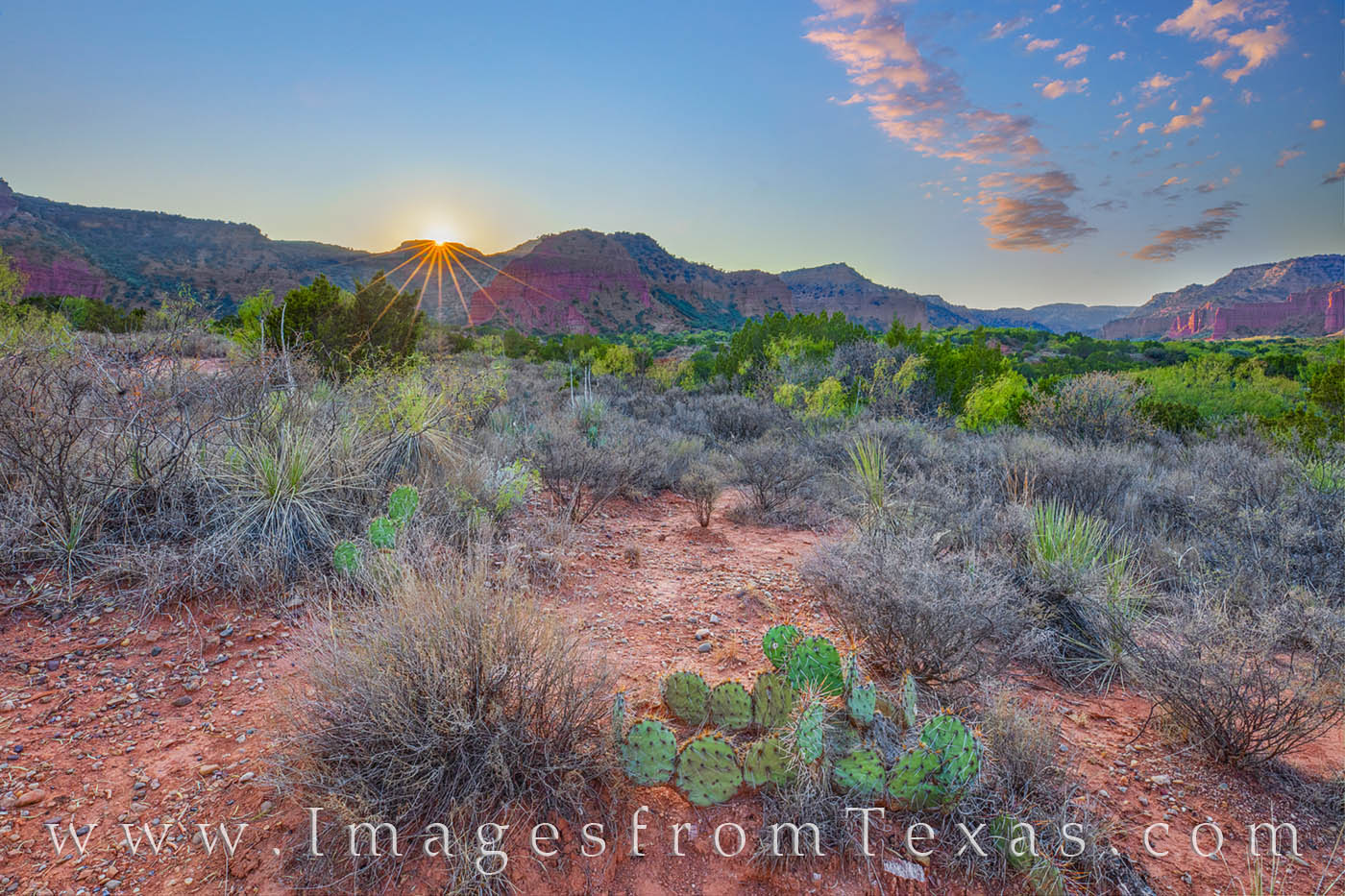 Caprock Canyon prints, Caprock Canyon State park, sunset, South Prong, South Prong camping, west Texas, prickly pear, camping, hiking, photo