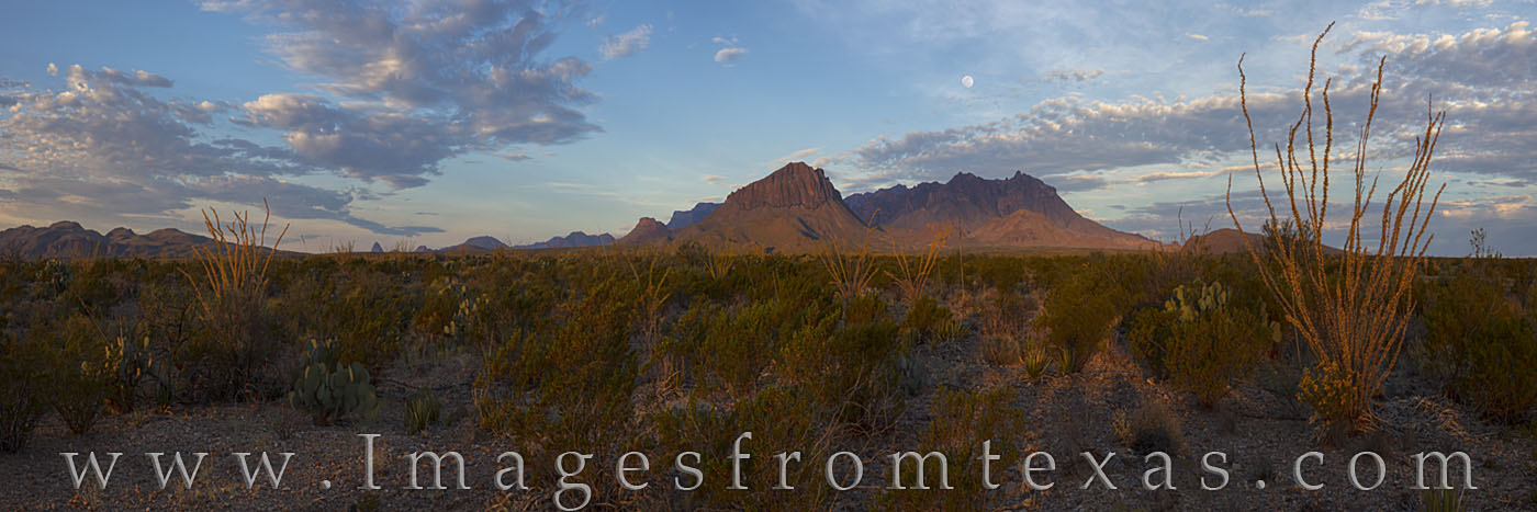 Chisos mountains, big bend panorama, big bend national park, big bend landscapes, ocotillo, November, sunrise, chisos panorama, autumn, texas hiking, texas adventures, photo