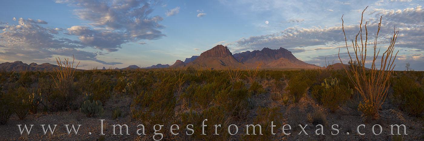 Chisos mountains, big bend panorama, big bend national park, big bend landscapes, ocotillo, November, sunrise, chisos panorama, autumn, texas hiking, texas adventures, photo
