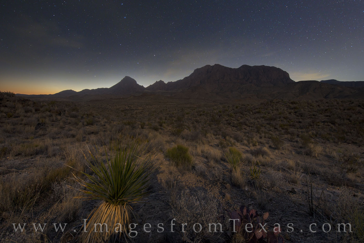 big bend, chisos mountains, full moon, dawn, stars, night, chihuahuan desert, yucca, photo