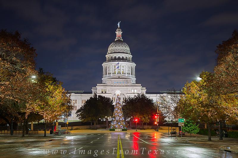 Texas christmas tree,state capitol christmas tree,Texas state capitol,congress avenue,holiday in texas, photo