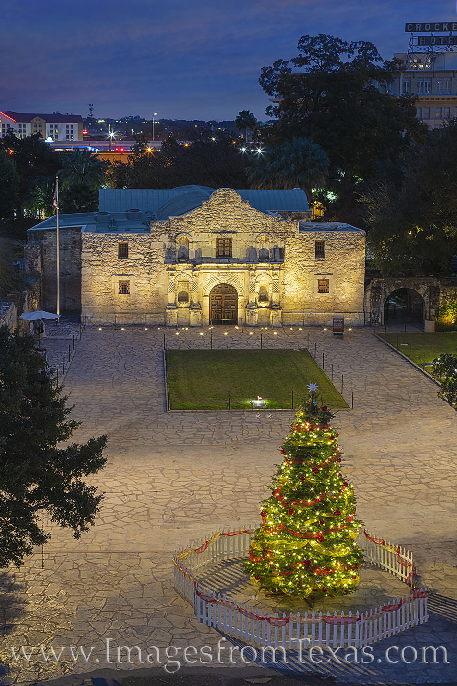 alamo, christmas tree, december, holidays, riverwalk, photo