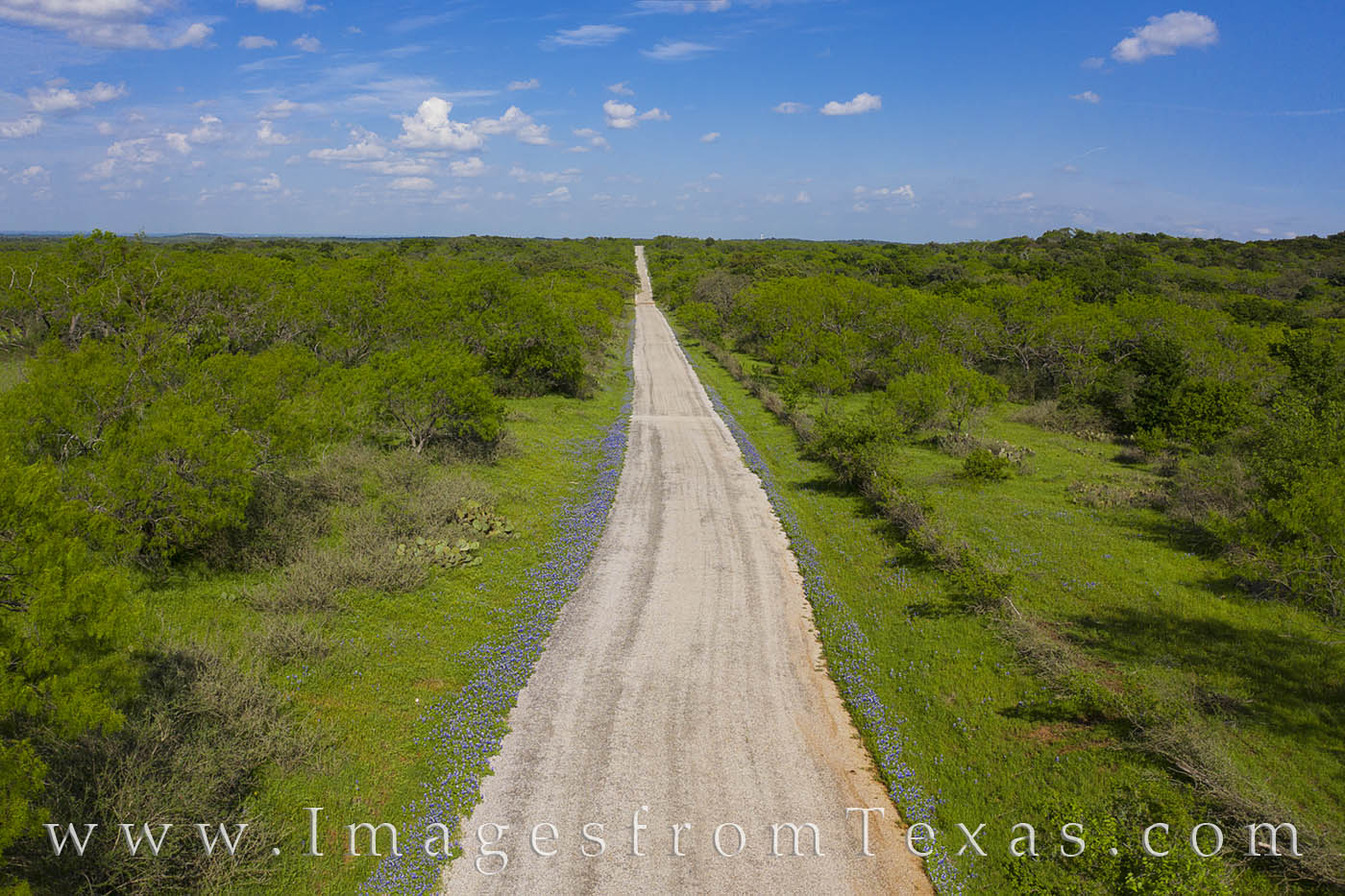 hill country, bluebonnets, county roads, ranch roads, drone, aerial, spring, green, photo