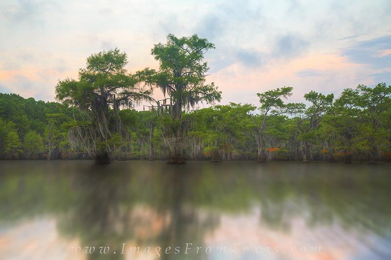 caddo lake sunrise,caddo lake photos,caddo lake prints,east texas images,texas sunrise,texas landscapes, photo