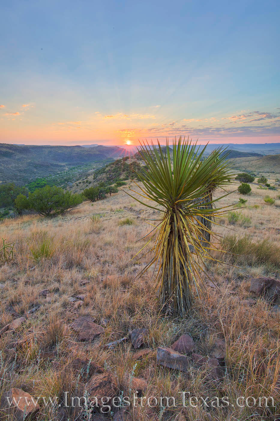 davis mountains, davis mountains state park, fort davis, skyline drive trail, texas state parks, sunrise, texas sunrise, texas hikes, texas landscapes, hiking, texas, yucca, photo