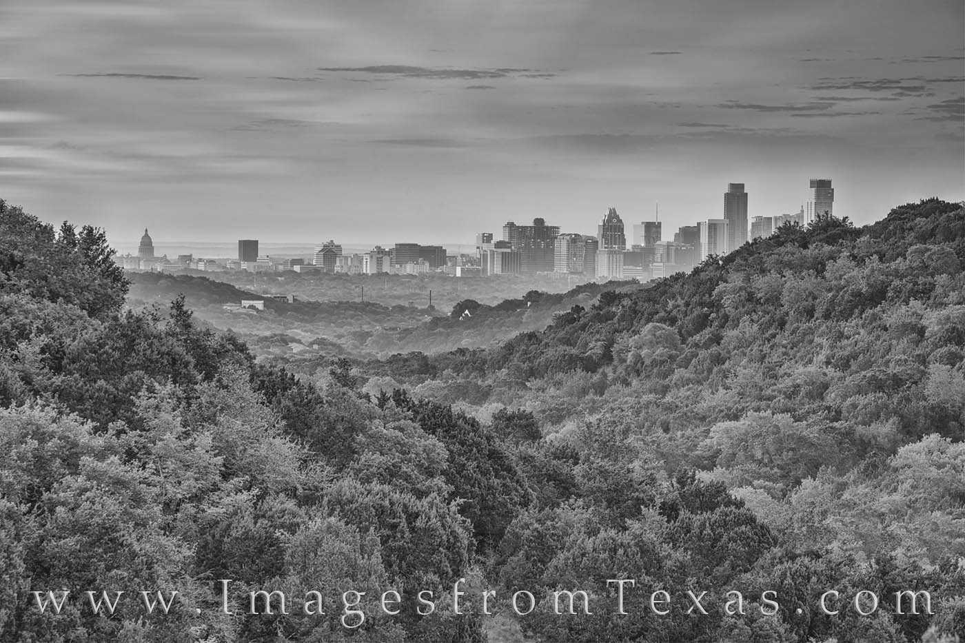 This black and white image shows the downtown skyline of Austin, Texas, on a summer morning.