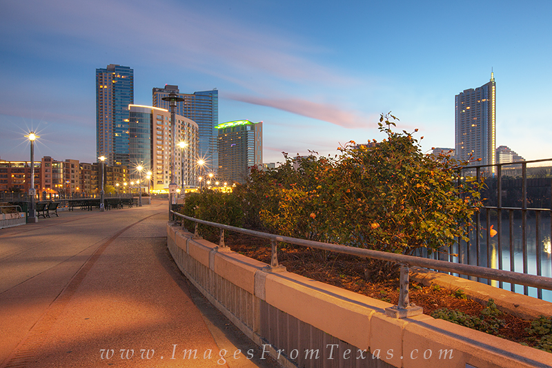 austin texas images,austin skyline,lady bird lake,pedestrian bridge,zilker park, photo