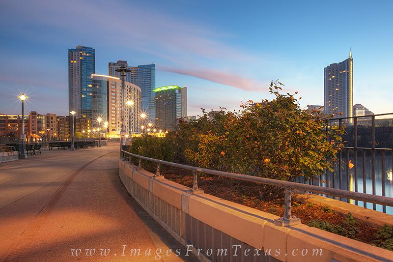 austin texas images,austin skyline,lady bird lake,pedestrian bridge,zilker park, photo