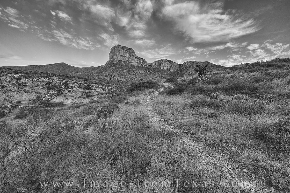 This black and white photograph taken in Guadalupe Mountains National Park shows the El Capitan Trail as it heads west. This...