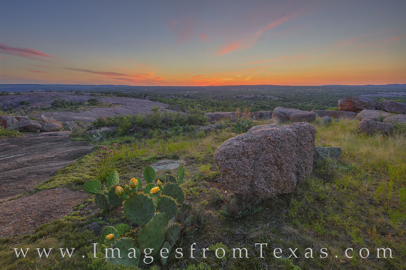 texas hill country, enchanted rock, prickly pear, cacti, wildflowers, prickly pear blooms, little rock, hills, central texas, texas state parks, sunset, evening, May, photo