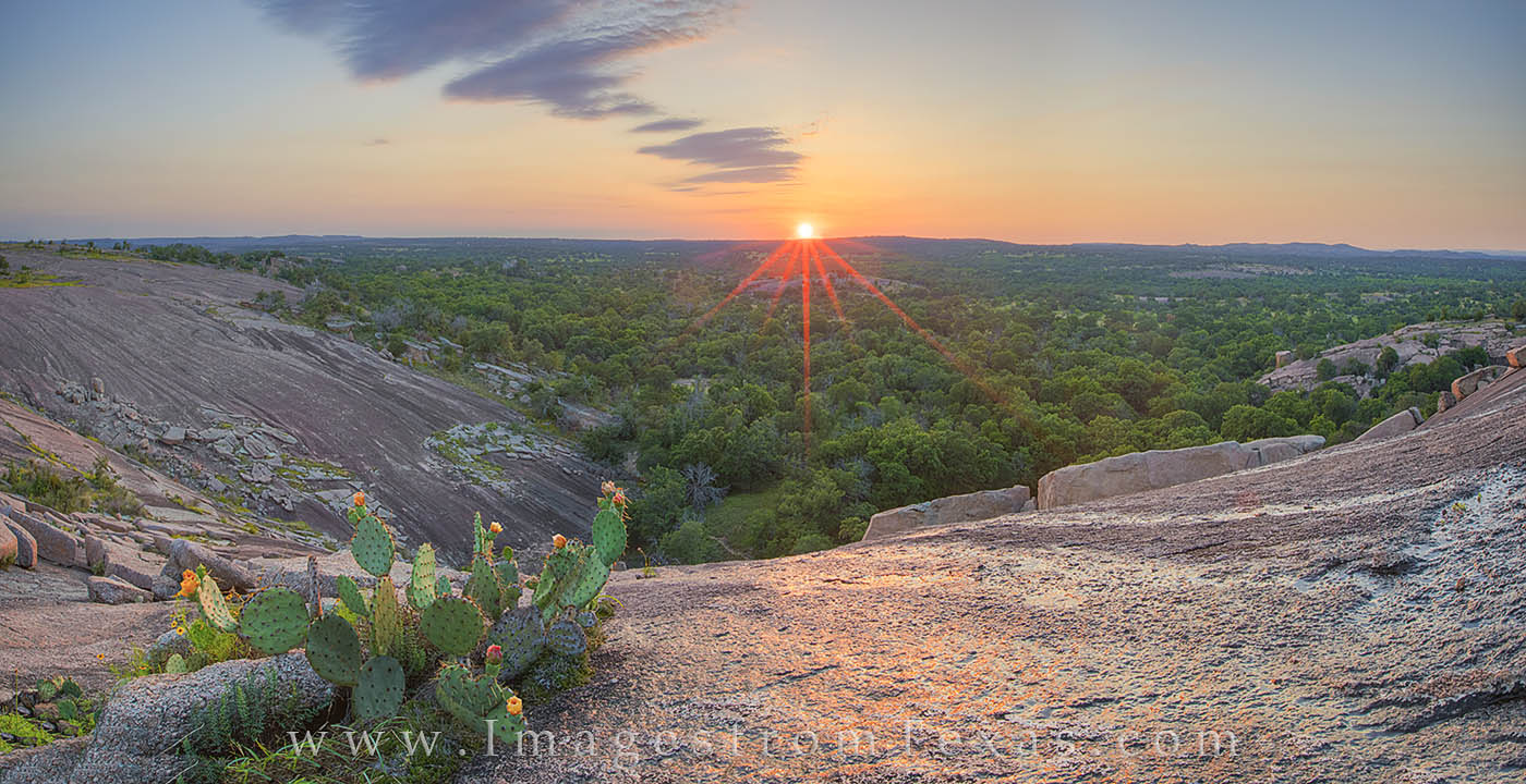 enchanted rock, texas hill country, prickly pear, texas wildflowers, texas sunset, hill country sunset, hill country photos, texas landscapes, photo