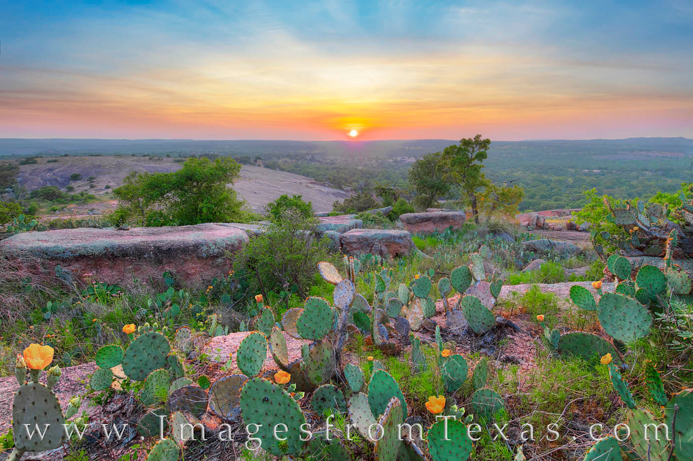enchanted rock, prickly pear, sunset, wildflowers, hill country, rugged, granite, hiking texas, exploring texas, photo