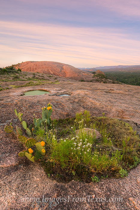 enchanted rock state park, enchanted rock photos, texas hill country photos, enchanted rock prints, photo