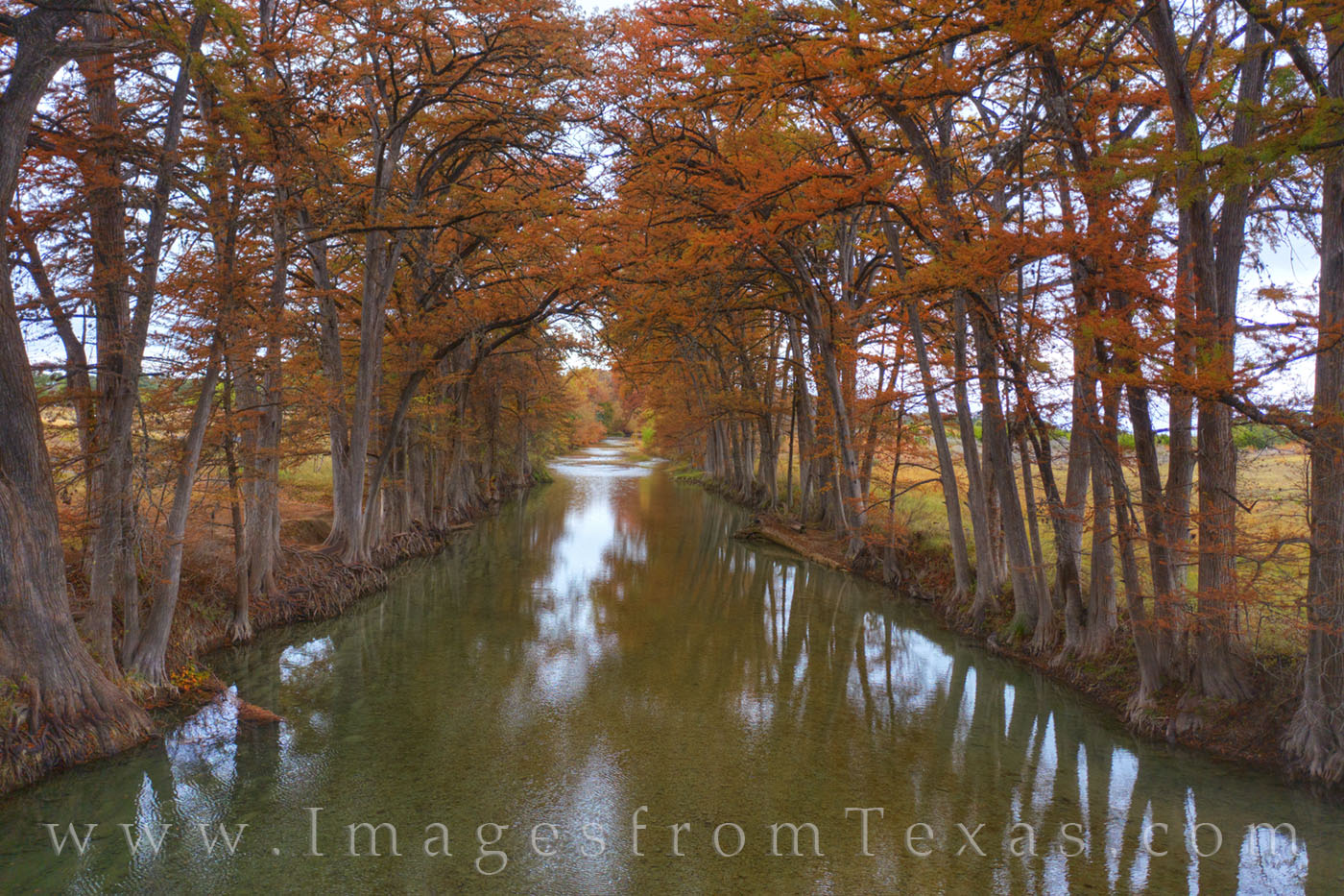 texas hill country, medina river, bandera, medina, fall, autumn, cypress, november, drone, photo