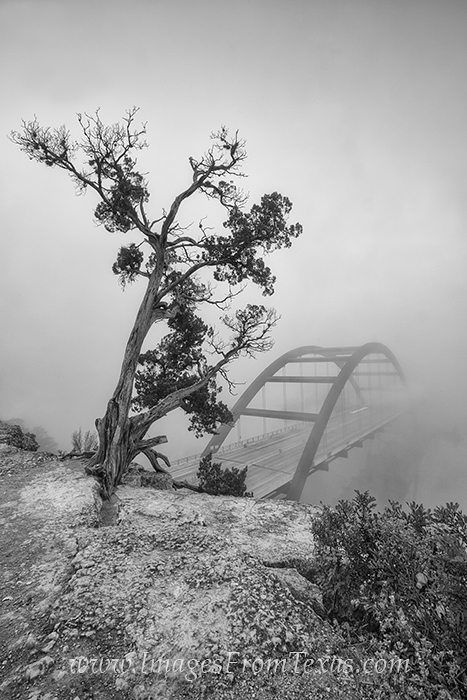 austin black and white,black and white images,360 bridge in fog,360 black white, photo