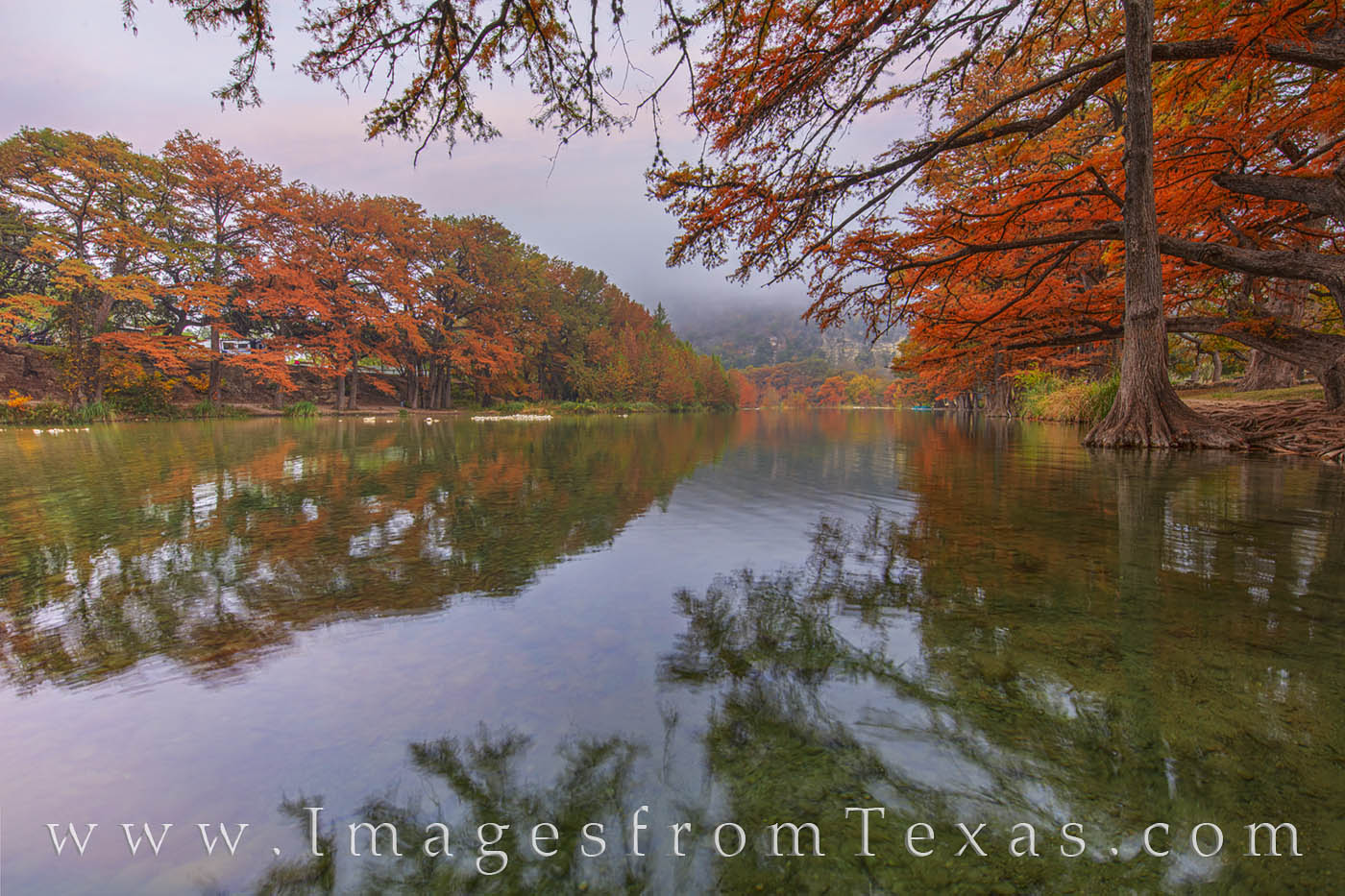 On a foggy November morning along the Frio River, the trees still showed off their fall colors of red and orange even as Old...