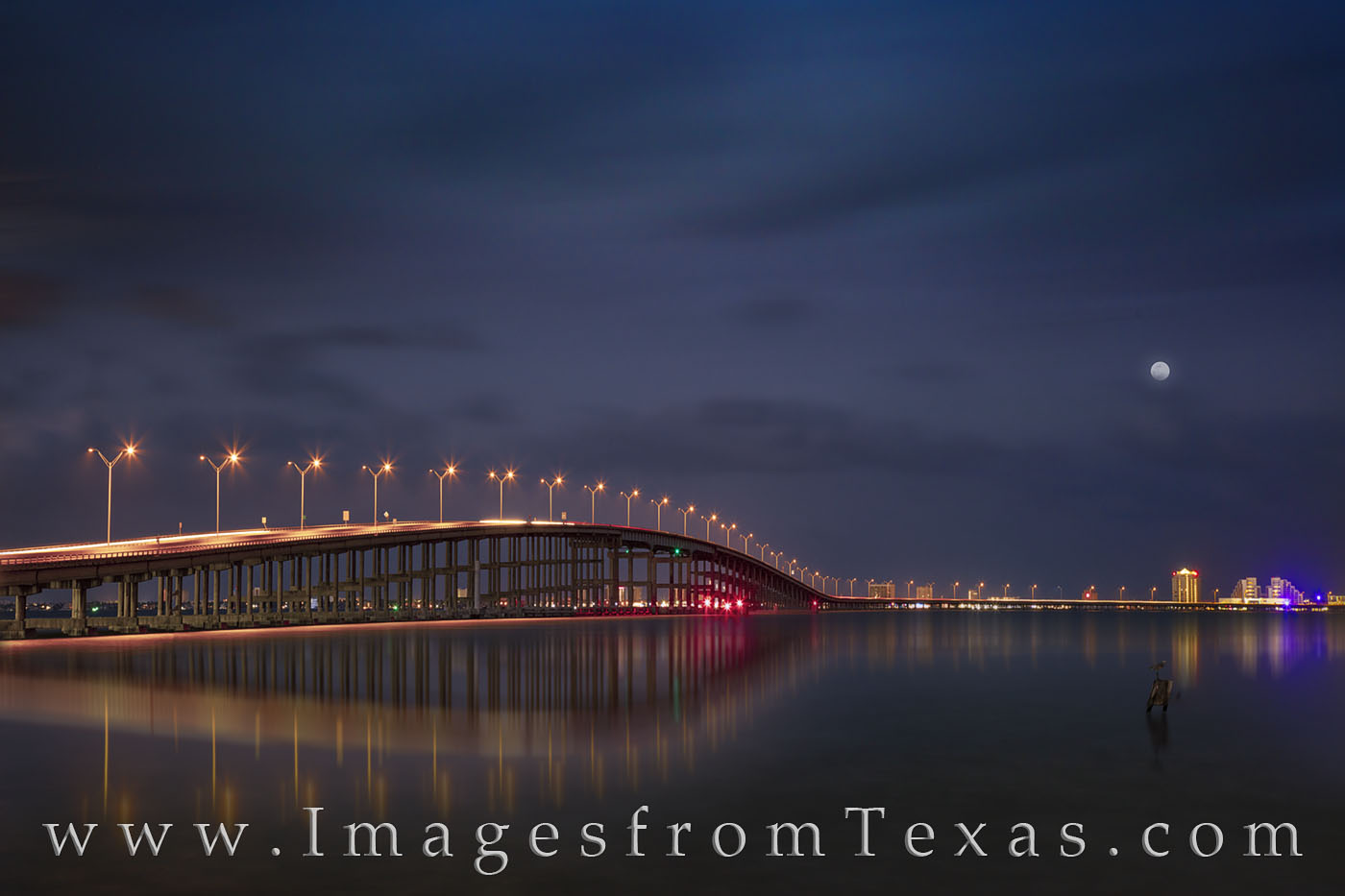queen isabel causeway, bridge, laguna madre, south padre island, port isabel, night, heron, bird, lights, south texas, highway, photo