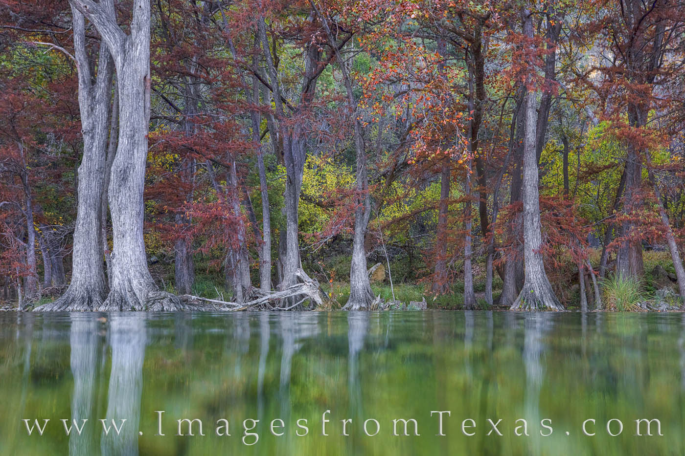 garner state park, autumn colors, texas hill country, fall colors, texas fall colors, frio river, frio river images, water, beneath the water, photo