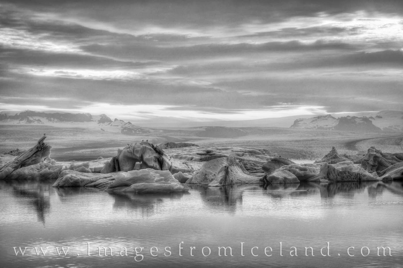 Taken at around midnight, this photograph shows Jökulsárlón Lagoon in black and white. Gulls rest on the floating blocks of...