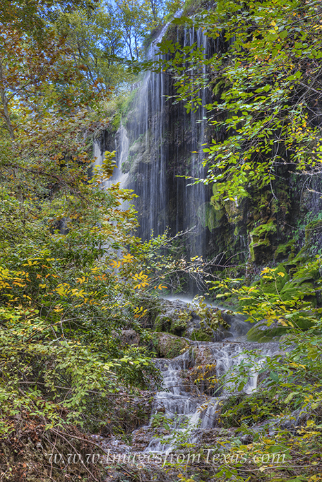 colorado bend state park,texas hill country,gorman falls,gorman falls images,colorado bend images,colorado bend state park photos,texas hill country waterfalls,texas waterfalls,waterfalls in texas, photo