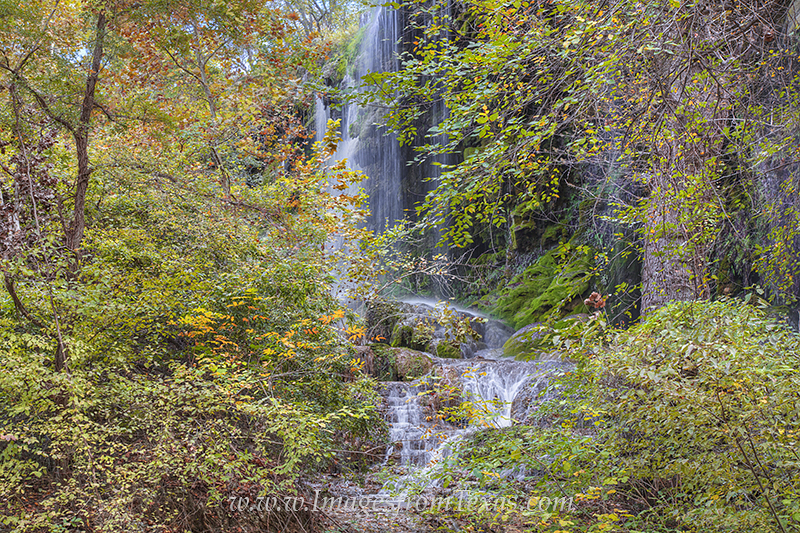 colorado bend state park,gorman falls,gorman falls prints,gorman falls images,texas hill country images,texas gems, photo