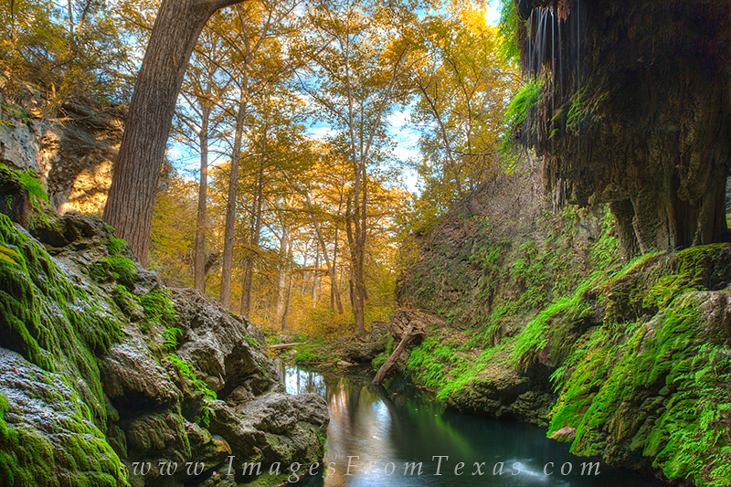 I was fortunate to have the opportunity to photograph the grotto at Westcave preserve in the late fall. The Autumn colors of...